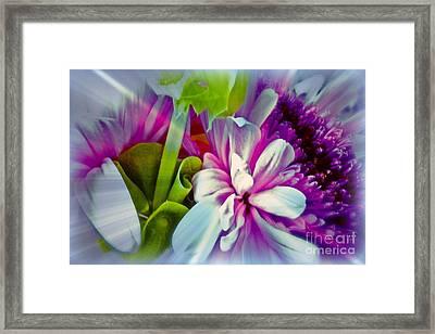 Floral Array Framed Print by Linda Bianic