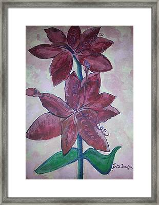 Framed Print featuring the photograph Floral Beauty by Joetta Beauford