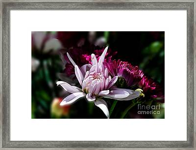 Floral Beauty Framed Print by Michelle Meenawong