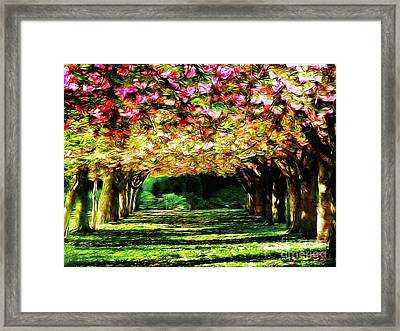 Floral Canopy Framed Print by Nishanth Gopinathan