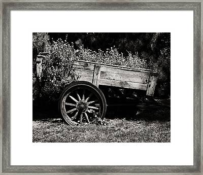 Floral Cart Framed Print by Camille Lopez