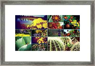 Floral Collage Framed Print by Celestial Images
