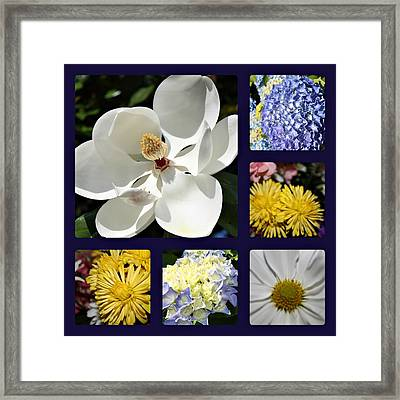 Floral Collage Framed Print by Carolyn Ricks