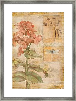 Floral Dragonfly Framed Print by Paul Brent