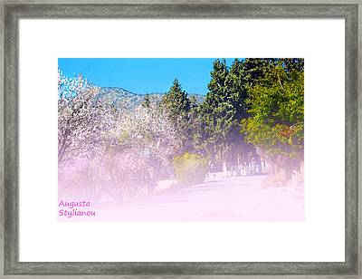 Floral Entrance Framed Print by Augusta Stylianou