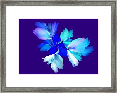 Floral Fantasy 012815 Framed Print by David Lane