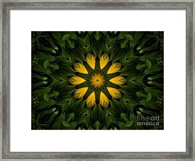 Floral Fantasy - 33 Framed Print