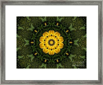 Floral Fantasy - 34 Framed Print