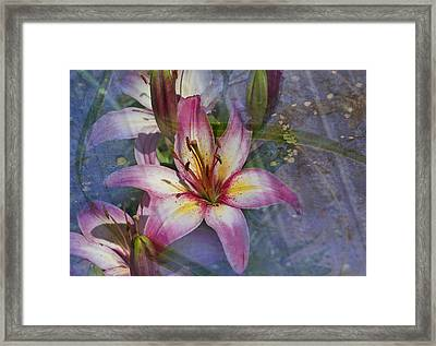 Floral Fantasy V Framed Print by Barbara Smith