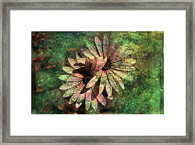 Floral Fiesta - S15c Framed Print by Variance Collections