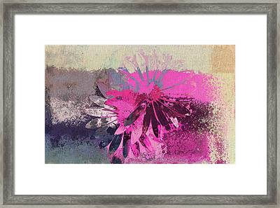Floral Fiesta - S31at01b Framed Print by Variance Collections