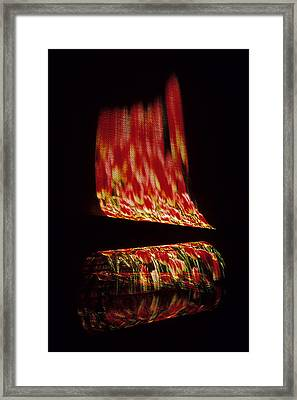 Floral Fire Framed Print by Doug Davidson