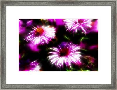 Framed Print featuring the photograph Floral Fireworks by Selke Boris