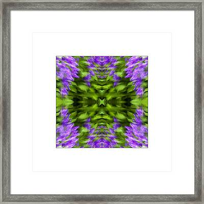 Floral Focus Framed Print by Don Powers