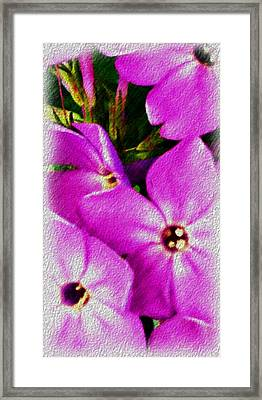 Floral Fun 012714 Framed Print by David Lane