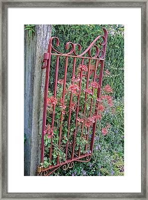 Floral Garden Gate Framed Print by Linda Phelps