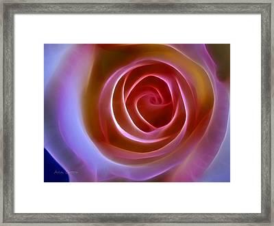 Floral Light Framed Print by Ann Croon