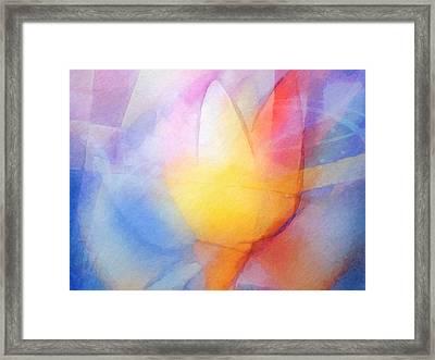 Floral Light Framed Print by Lutz Baar