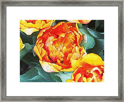 Floral Splendor 1 Framed Print by Michael Anthony
