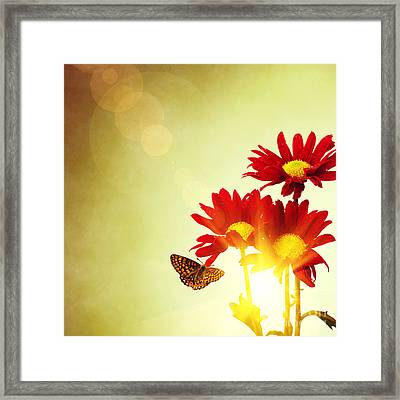 Floral Spring II Framed Print by Carlos Caetano