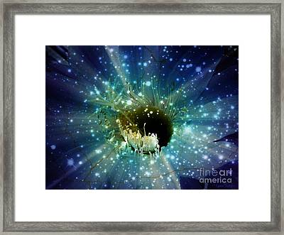 Floral Stratosphere Framed Print by Leanne Seymour