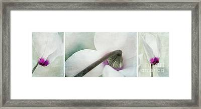 Floral Whites Framed Print by Priska Wettstein