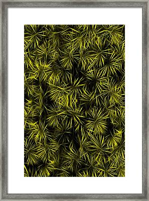 Floral Yellow Abstract Framed Print by David Dehner