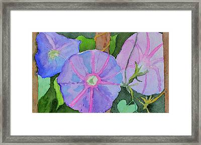 Framed Print featuring the painting Florence's Morning Glories by Beverley Harper Tinsley