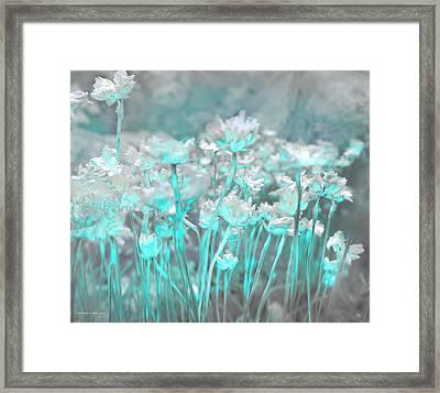 Flores De Roca Framed Print