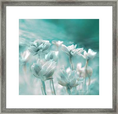 Flores Secas II Framed Print by Alfonso Garcia