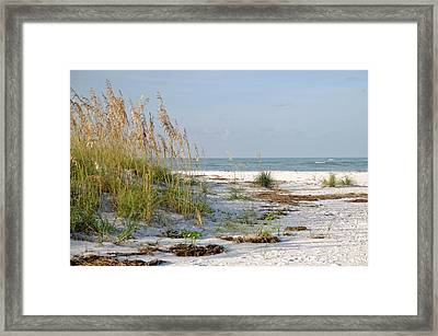 Florida Beach 2 Framed Print by Geraldine Alexander