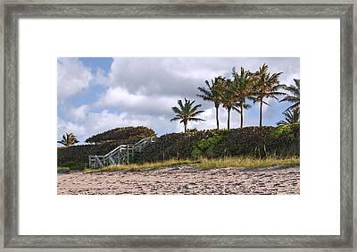 Florida Beach With Palms Framed Print