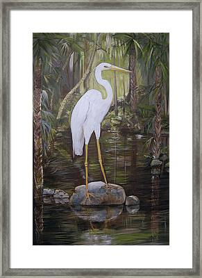 Florida Bird Framed Print