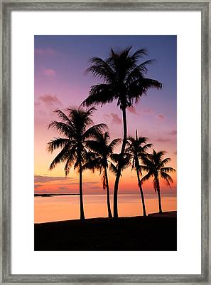 Florida Breeze Framed Print