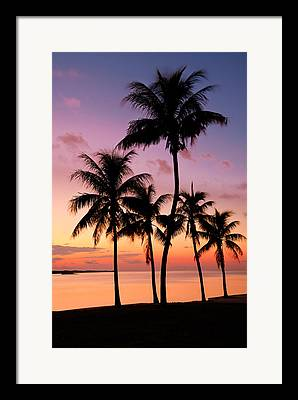 Sea Beach Framed Prints