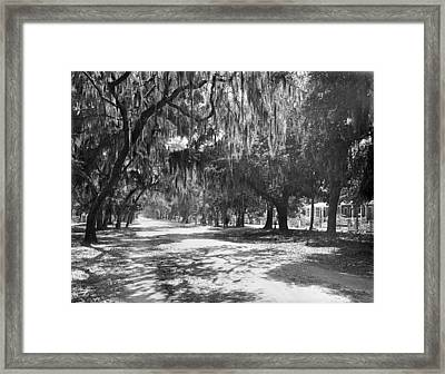 Framed Print featuring the photograph Florida Daytona, C1901 by Granger