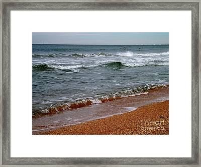 Framed Print featuring the photograph Florida Dreaming by Brigitte Emme