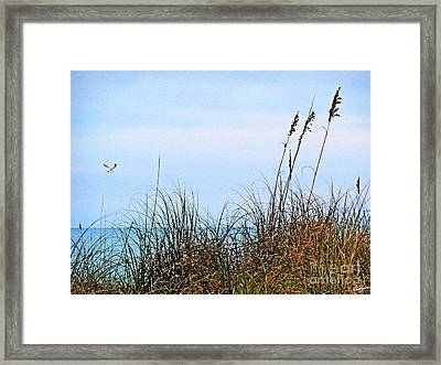 Framed Print featuring the photograph Florida Dunes by Melissa Sherbon