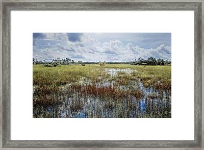 florida Everglades 0177 Framed Print by Rudy Umans