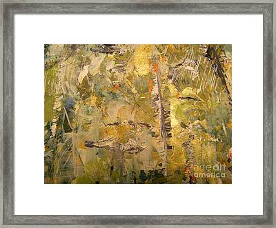 Florida Feather Framed Print by Nancy Kane Chapman