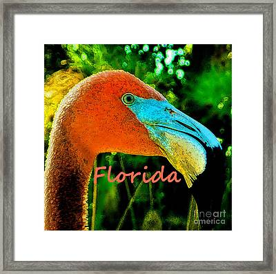 Florida Flamingo Framed Print