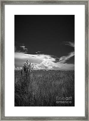 Florida Flat Land Framed Print