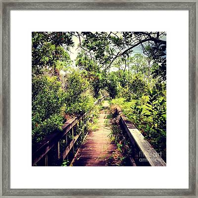 Florida Foliage 2 Framed Print by K Simmons Luna
