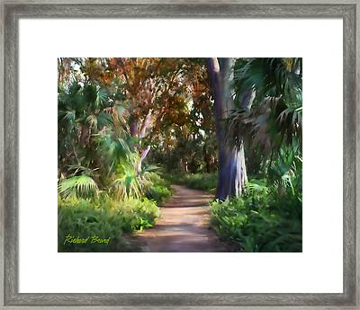 Florida Forest Framed Print
