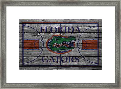 Florida Gators Framed Print by Joe Hamilton