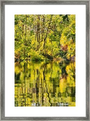 Florida Jungle Framed Print by Christine Till
