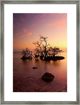Florida Keys Sunset Framed Print by Mike  Dawson
