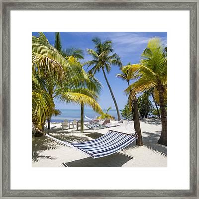 Florida Keys Wellness Framed Print by Melanie Viola