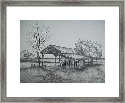 Florida Old Shed Framed Print
