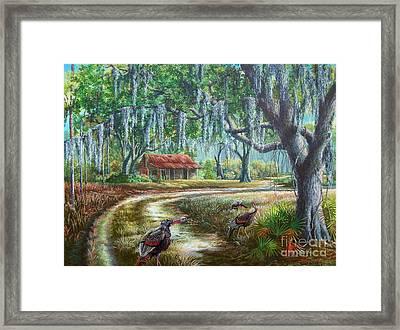 Florida Osceola Turkeys - Evening Shadows Framed Print